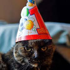 Кошка, живущая в Америке, 13-го марта отметила 27-летие!