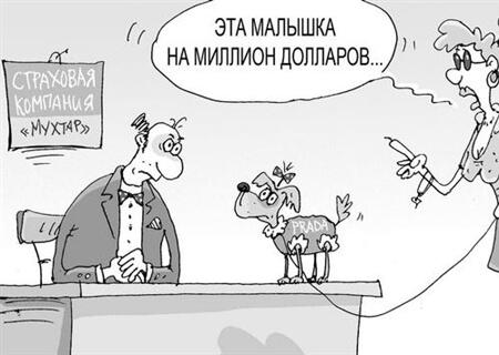 Страхование домашних животных