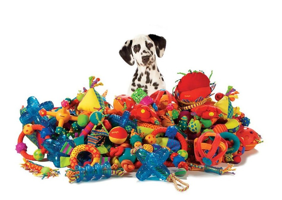 Популярные товары для собак